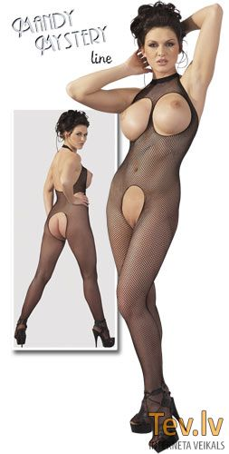 MandyMystery Catsuit [S-L] (1360) Open-bust fishnet